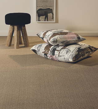 Quick, Easy, Affordable. Not what most expect with carpet cleaning.