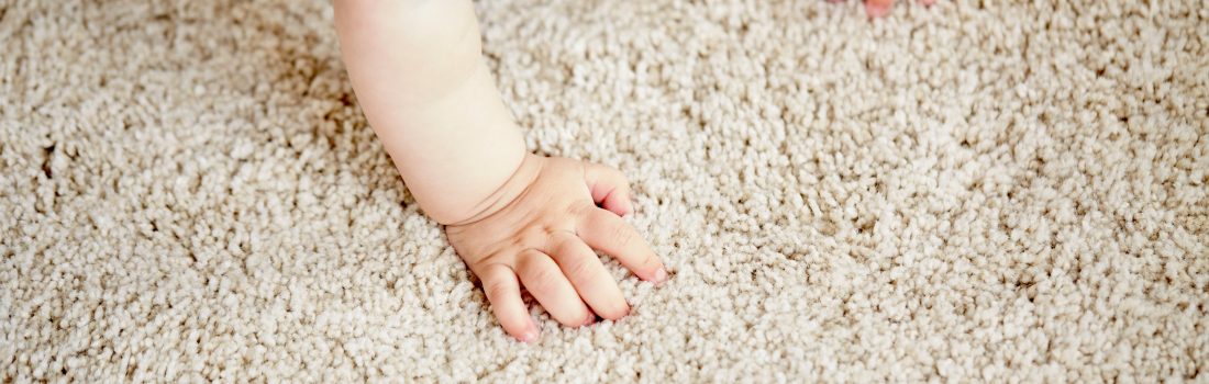 Residential Carpet Cleaning Home Prep