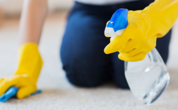 Carpet Spot Cleaners
