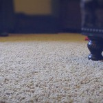 carpet – my heaven's best carpet cleaning